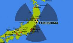 Une femme de Fukushima au siège de l'OMS